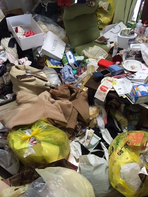 札幌市中央区 ゴミ屋敷 作業前 リビング