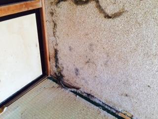 札幌市東区 遺品整理 壁 掃除前