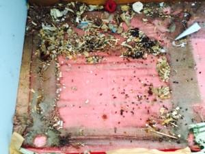 札幌市東区 冷蔵庫下 ねずみの巣