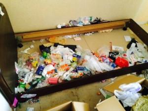 札幌市北区 ゴミ部屋 ベッド下作業前