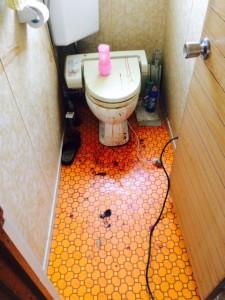 血の掃除 トイレ作業前