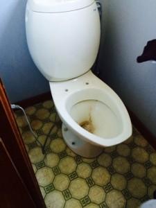 トイレ清掃中