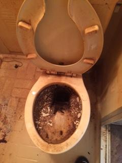 札幌市東区 孤独死現場 トイレ掃除前