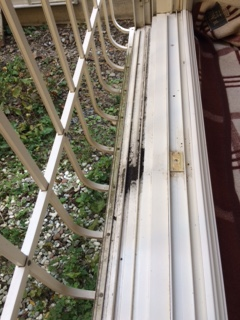札幌市西区 窓ガラス清掃1