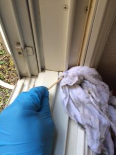 札幌市西区 窓ガラス清掃5
