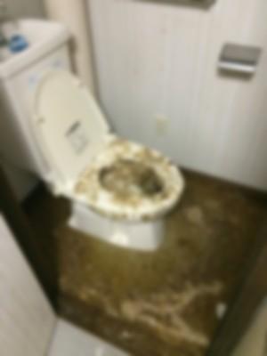 岩見沢市 トイレ 清掃前