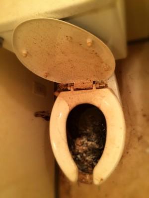かなり汚いトイレ