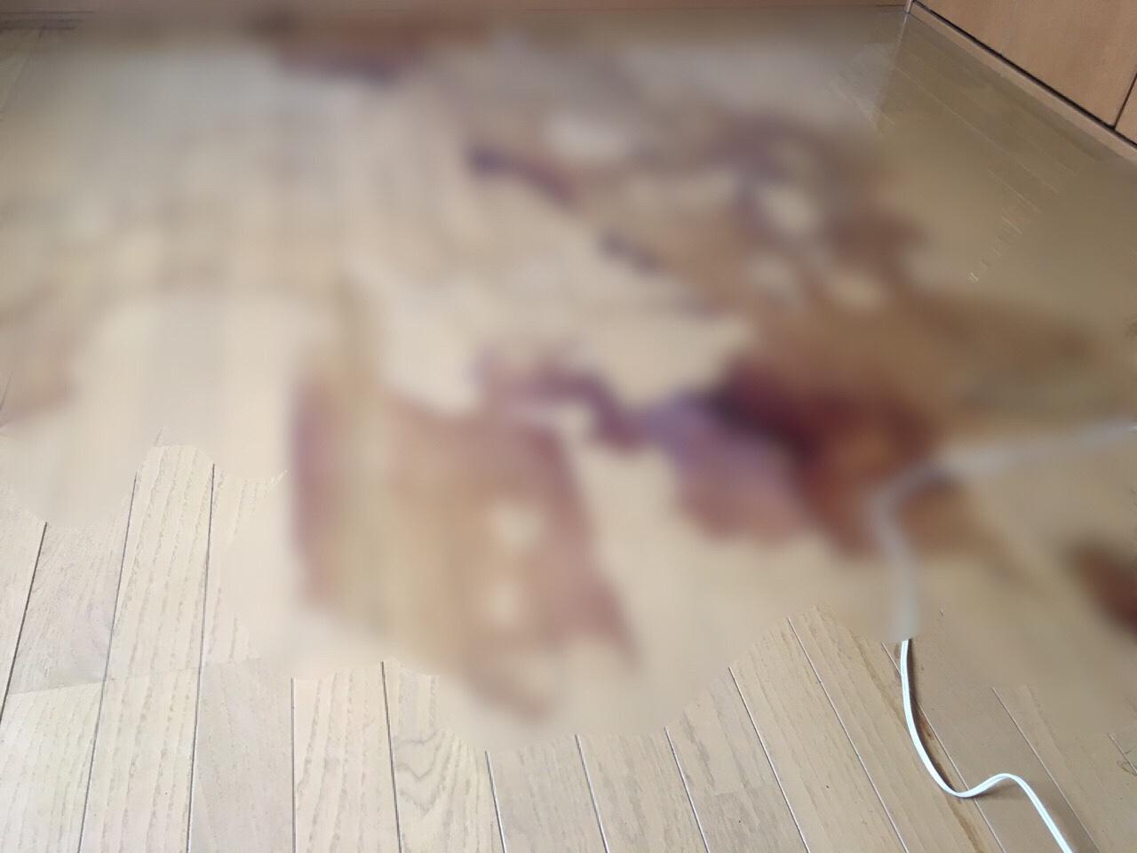 血液の特殊清掃 イメージ