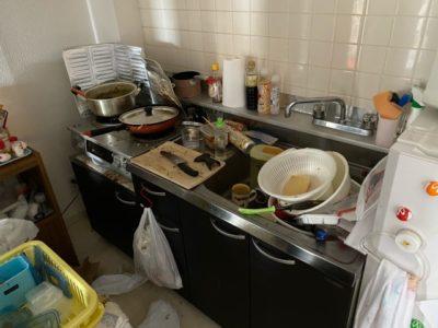 洗い物は溜めてしまいがちですよね、、、
