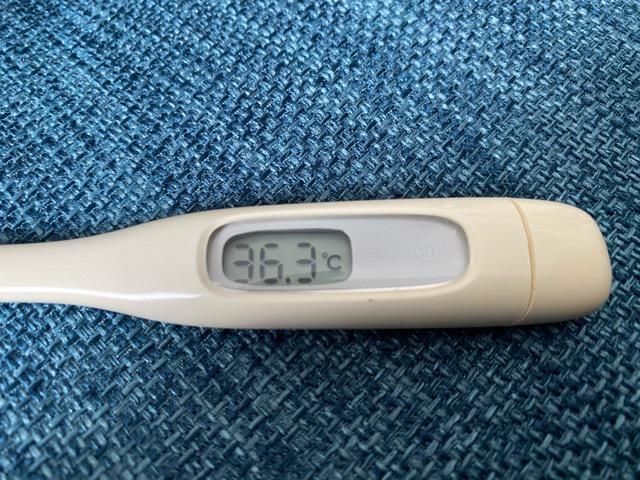 毎朝の検温を継続中