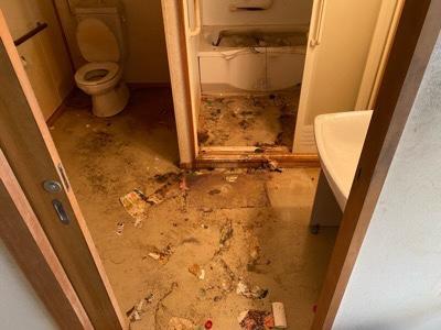 脱衣所周辺 糞尿汚れ