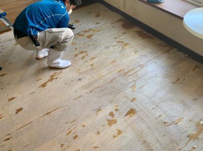 札幌市東区 床面の消臭